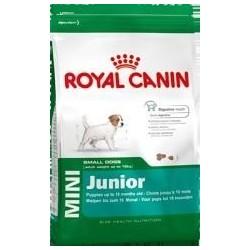 Royal Canin Taglia Mini...