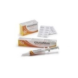 GlutaMax - Pasta-Siringa da...