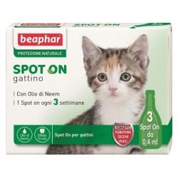 Spot On Gattino BEAPHAR