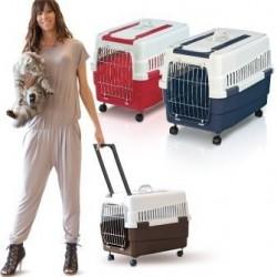 Carry Cat traspotino trolley
