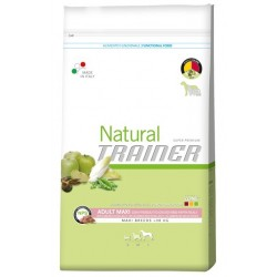 Trainer Natural Ault Maxi...